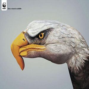 تبلیغات خلاق حمایت از حیوانات