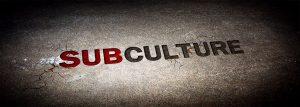 رفتار مصرف کننده خرده فرهنگ