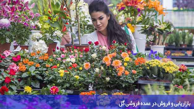 بازاریابی و فروش در عمده فروشی گل