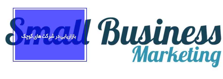 بازاریابی در شرکت های کوچک