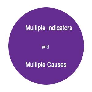 مدل های با معرف های چندگانه و علل چند گانه