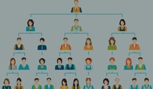 اهمیت ساختار سازمانی
