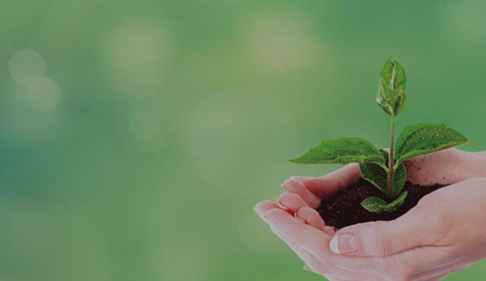 بازاریابی سبز گرین مارکتینگ